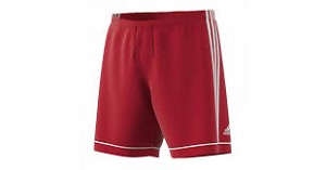 Adidas Squadra 17 Short - Youth / Adult CL#214